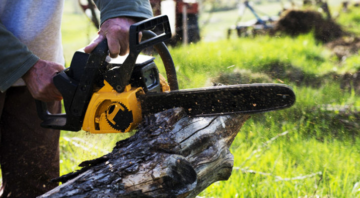 Homeowner using a chainsaw