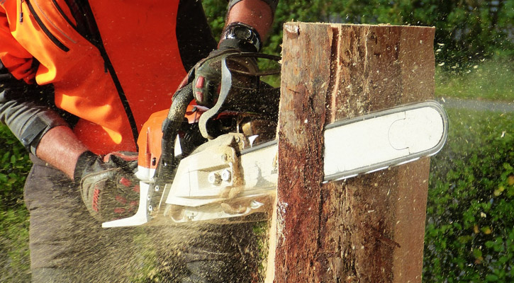 Best 16 inch chainsaw cutting a log