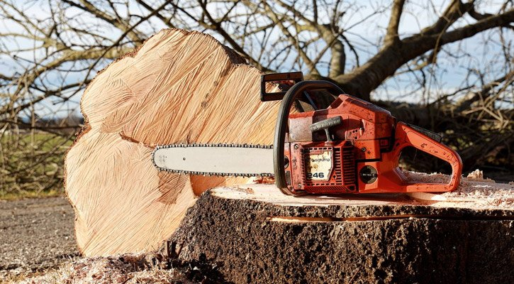 Proper Chainsaw Techniques (for Cutting Trees, Logs & Stumps)
