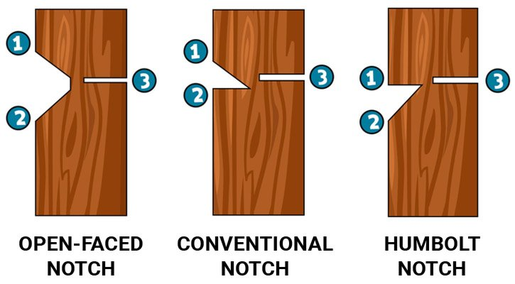 Tree cutting felling notches